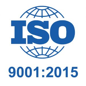 New ISO and Standards Logo 1-08
